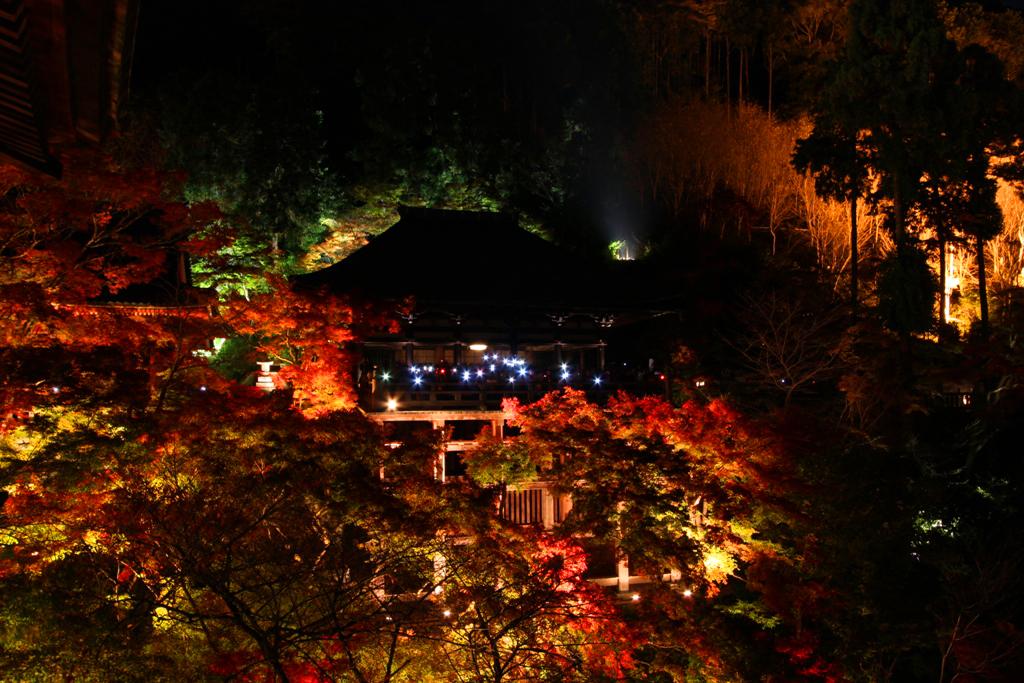 Kiyomizu-dera Illumination 2010  (4)