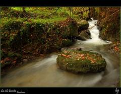 La isla bonita (kgorka) Tags: rio stone canon river island agua sigma kata 1020 bizkaia isla roca manfrotto polarizador muskiz eos7d gorkabarreras