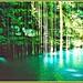 cenote--yucatan