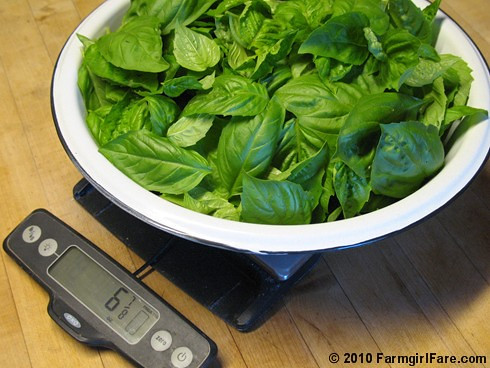 Freshly Picked Basil on the Kitchen Scale