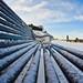 Snowy Calton Bench