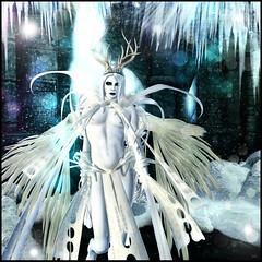 The Winter King (Winter Jefferson) Tags: br barerose winterjefferson