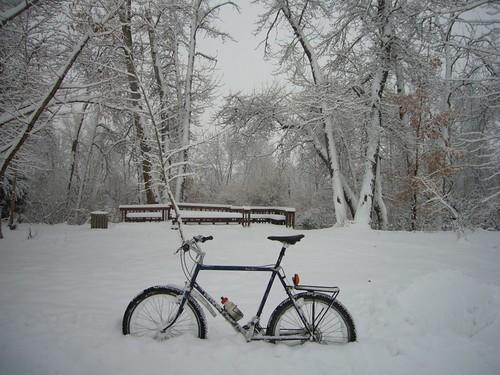 101201 Snow 5