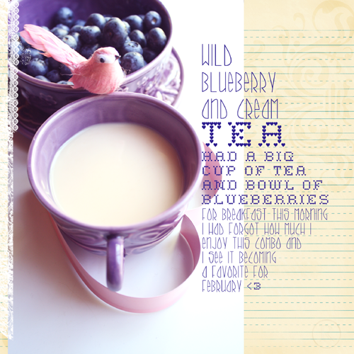 Wild Blueberry & Cream Tea