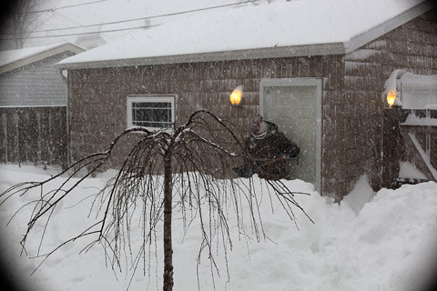 snowstorm11-4-0211