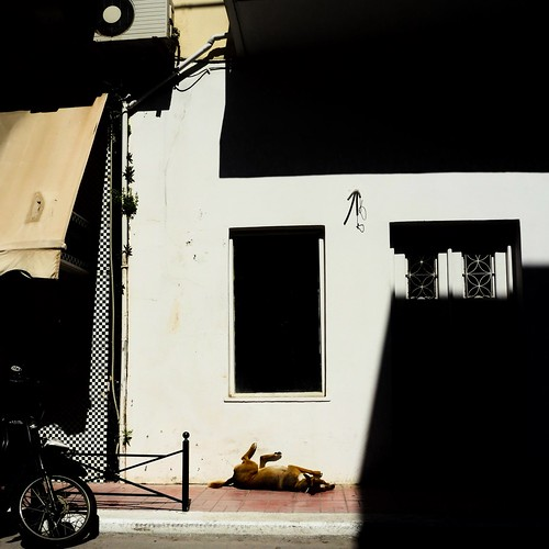 Lazy Dog, Sitia