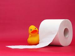 This is my toilet paper roll. QUAK QUAK. (Lukinator) Tags: ente duck klopapier toilet paper pink rosa quak einfach simple fujifilm finepix hs20 lukinator gelb yellow drüberschauen to look over funny lustig witzig crazy verrück this is roll das ist meine klopapierrolle quietscheente