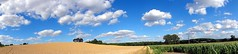 Fields and Clouds (★Nadine★) Tags: panorama nature landscape landschaft sweap sonyhx5v