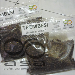 __Trembesi250c (Ronyps) Tags: pohon bibit samaneasaman penghijauan lebbeck benihtrembesi kihujan