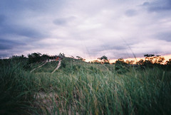 (Alexa Viscius) Tags: sunset beach 35mm michigan lol tallgrass puremichigan
