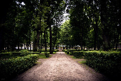 An old park / Старый парк (Boris Kukushkin) Tags: road park trees bush alley poland дорога польша парк bialystok деревья аллея кустарник белосток