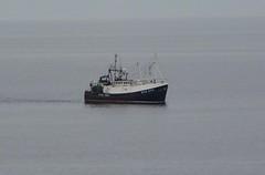 Conquest (allyB803) Tags: fishingboat trawler morayfirth