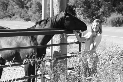 spanish fork horse