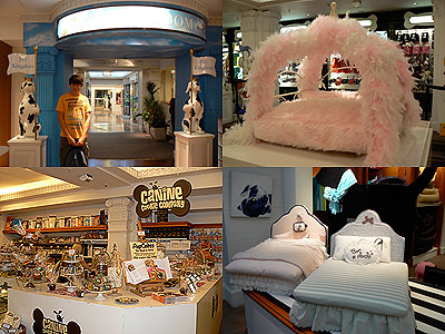 pet kingdom harrods.jpg