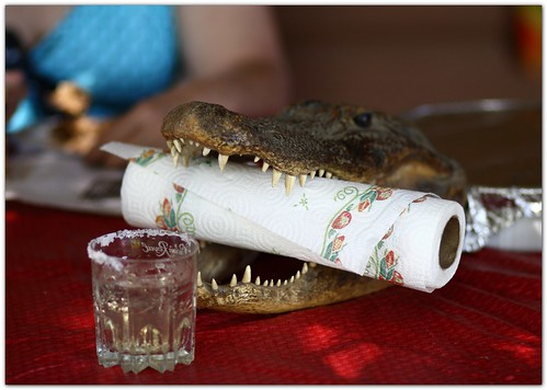 Cajun paper towel holder...