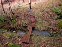 Libbe @ footbridge.jpg (lao_ren100) Tags: california wood bridge water northerncalifornia creek stair path passage laytonville mendocinocounty laoren100