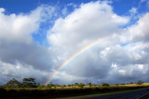North Shore Rainbow