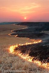 Spring range burning during sundown (James Nedresky photographer) Tags: sunset fire burning kansas prairie grasslands tallgrass tallgrassprairie landscapephotography kansasflinthills