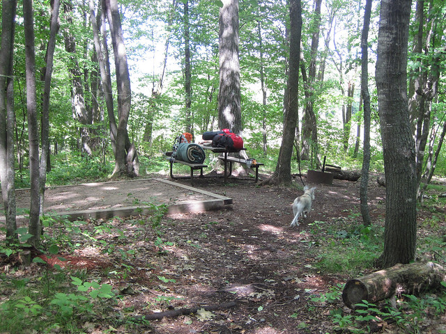 campsite arrival