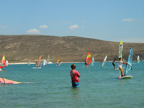 everybody just wants to go windsurfing