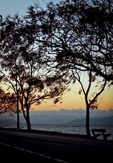 Coming Back (Sisso da Mi) Tags: 50mm nikon florianópolis 18 d40