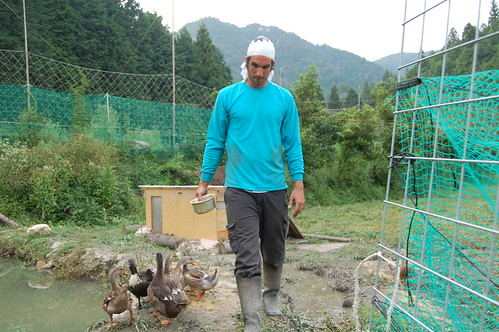 Permaculture experience in Ohara