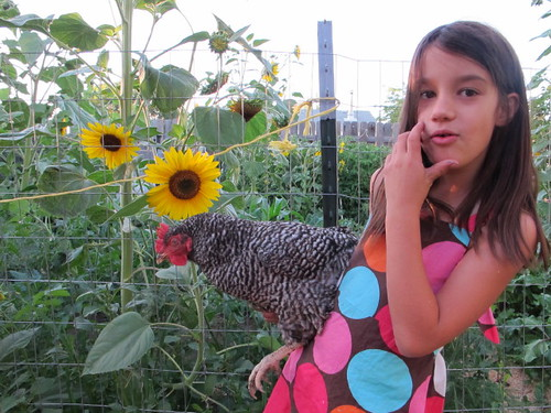 Posing with her chicken and sunflowers