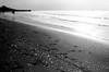 sea shells and footprints (khaniv13) Tags: sea bw shells film beach analog sand nikonfe pantai 24mmf28 jawatengah widuri autaut pemalang khaniv13