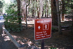 Follow the nice signs Photo