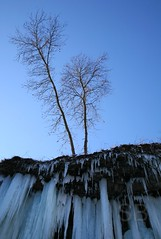 trees and waterfall (Studiobaker) Tags: park blue trees winter sky snow cold tree ice minnesota creek waterfall skies bare duo pair south minneapolis falls mpls edge icicle trunk icy mn icicles minnehaha studiobaker