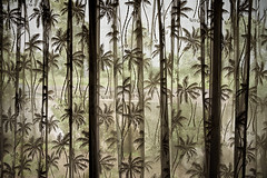(todoslosantos* Juan Antonio Balsalobre) Tags: india restaurant restaurante palmeras palmtrees curtains inside cortinas dentro rajasthan rajastan todoslosantos juanantoniobalsalobre juanantoniobalsalobrecarbonmadecom
