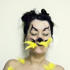 they always tell me I have that look... (enjoythelittlethings) Tags: silly face goofy birds yellow cat canon fun head feathers 365 hiccup itellyou iswearididntdoit mfimc shouldersp iwishihadbettercollarbones catatethecanary