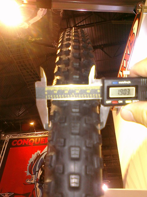 Maxxis Beaver 29er tire