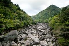 4/25/2010 (akim_hobo) Tags: trees green water japan river waterfall nikon rocks hiking iso400 tracks n shift trail 24mm f56 nikkor yakushima 35 tilt lightroom f35 pce andrewkim 1320sec 24mmf35 d700 nikond700