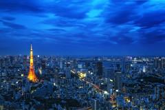 [フリー画像] 建築・建造物, 都市・街, 夜景, 東京タワー, 日本, 東京都, ブルー, 201009270100