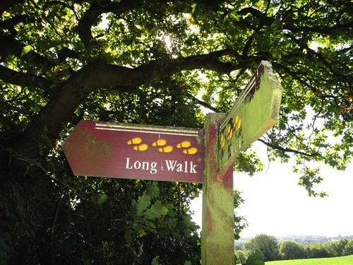 It's a long walk! Photo