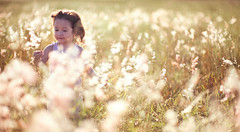 _NSY5114 (Nasey) Tags: flowers portrait people girl field grass backlight kid nikon bokeh yorkshire malaysia nikkor dslr d3 terengganu wideopen kualaterengganu grassfield 85mmf14d hawwa nasey kupih nasirali