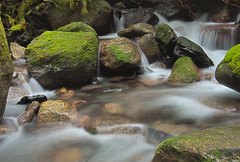 Idyllic Creek Cascade (Cascade Motif) Tags: green creek washington stream bokeh cascades idyllic hdr slowshutterspeed skykomishriver updatecollection ucreleased
