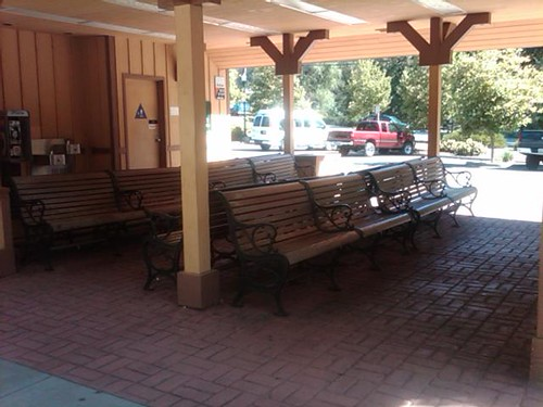 Crickets at the Placerville stop