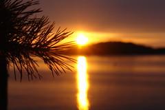 sunset... (sara...ark) Tags: europa estate sweden svezia nessunritocco stoccolmaedintorni