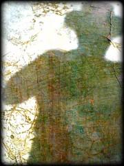 Morabito en Casa Urrach (Pepe Alfonso) Tags: camera texture textura abandoned neglected ruin plastic ruine abandon ruinas di hari texturas decayed ruinen abandono ruïna doku rovine toi desolacion abandonado desolazione rovina testura zerstörung textuur vergessen ruinous destruccion textur miseria distruzione текстура elend marginacion tekstur verwüstung abandonnés nezumi délabrée ruïnes abbandonate desolació superheadz áferð abandonat digitalcamara destrucció toicamera verlassenen oblidat abandonament abbandonare υφή digitalharinezumi ruineux cilësi zumidigital digitalharinezumi2 aufzugeben ruinösen ruïnós rovinosa olvidadoruine abandecairuinsexplorationforgottenoubliéeabandonnerabandonnésruinadonedplaces digitalharinezuharinezumicamara harinezumifotografia rudesolated uigeacht konsistens casaurrach