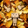 092/365:  We Can Stay Like This Forever. (Randy Santa-Ana) Tags: danbo danboard minidanbo minidanboard nature season autumn fall toys project365 365daysofdanbo gf1
