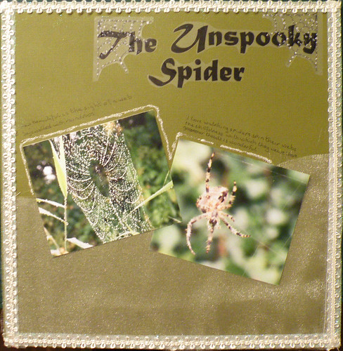 The Unspooky Spider