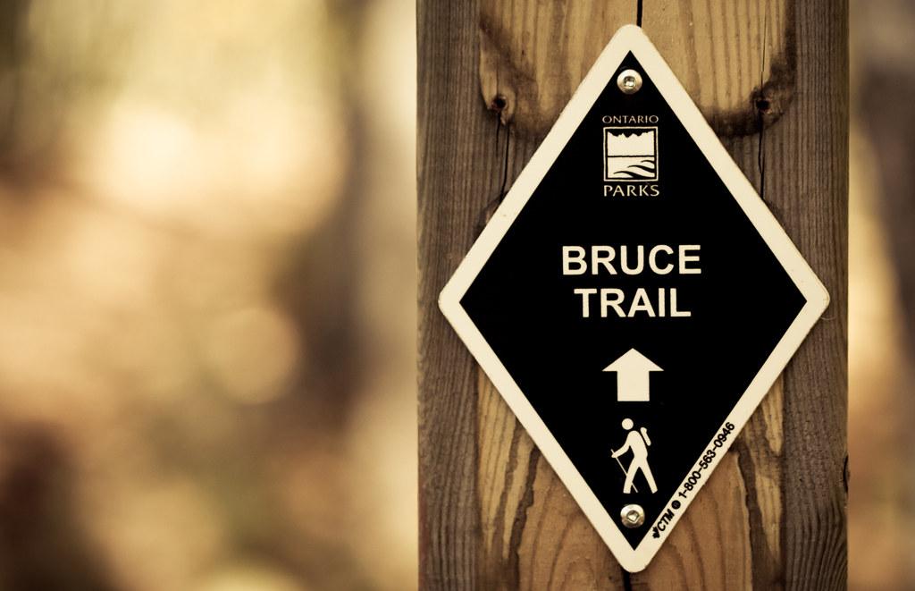 Bruce Trail [EOS 5DMK2 | EF 100mm Macro | 1/500 s | f/2.8 | ISO400]