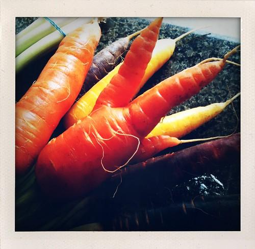 Mutant carrot!