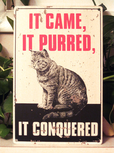 Cat Tin Sign