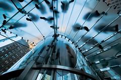 Shadows on me (Barbara Cerri) Tags: new york city travel shadow urban usa ny newyork apple glass architecture america stair ombre scala viaggio architettura città vetro