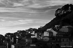 IMG_4665bw (v_|ncenzog_|amp) Tags: sunset blackandwhite white black nature canon photography eos photo bianco nero bianconero 450d gizzeria