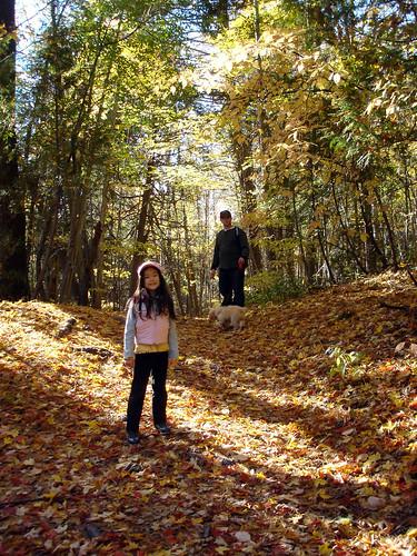 seaton trail woods