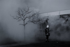 (Farlakes) Tags: tree lost fire place smoke brand department brandweer fuer farlakes